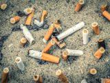 """Antrag """"Kampf den Zigarettenstummeln"""""""